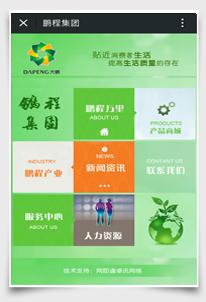 温州鹏程集团