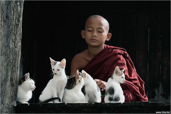 禅悟:心态是一切的根源